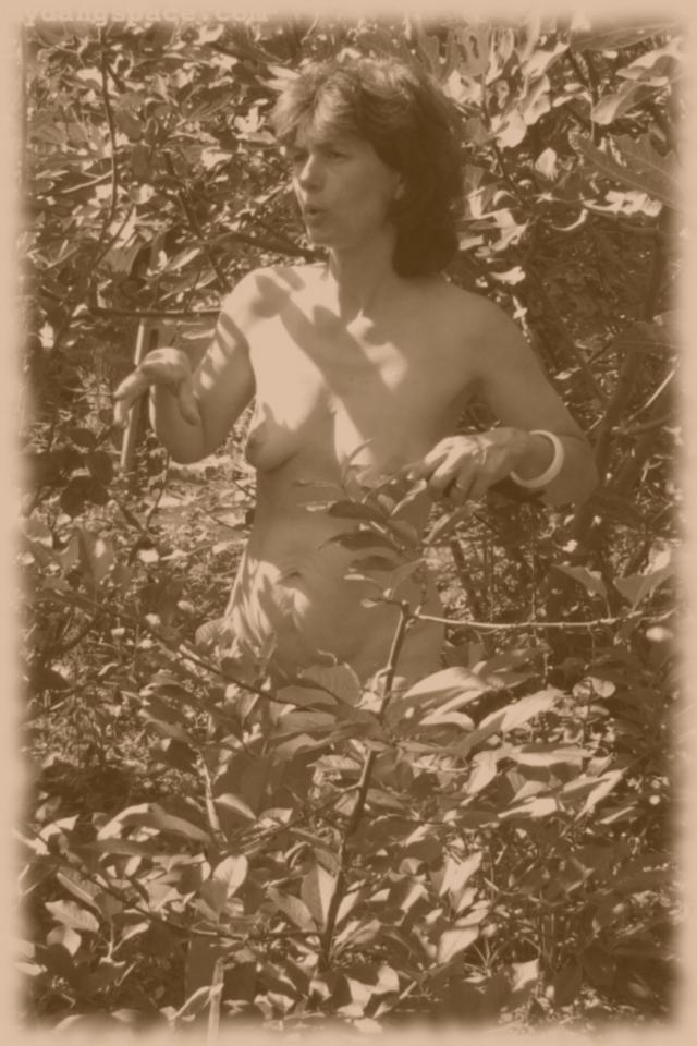 bunny-nude-figtreetalk-oldphoto