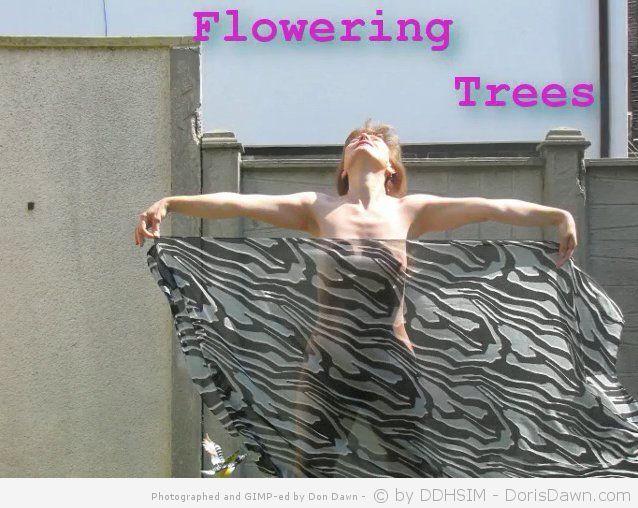 floweringtrees1