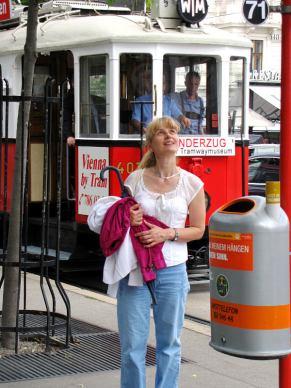032-vienna-trams