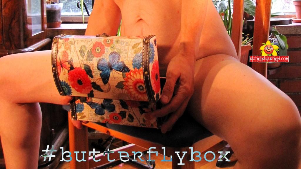 #ButterflyBox
