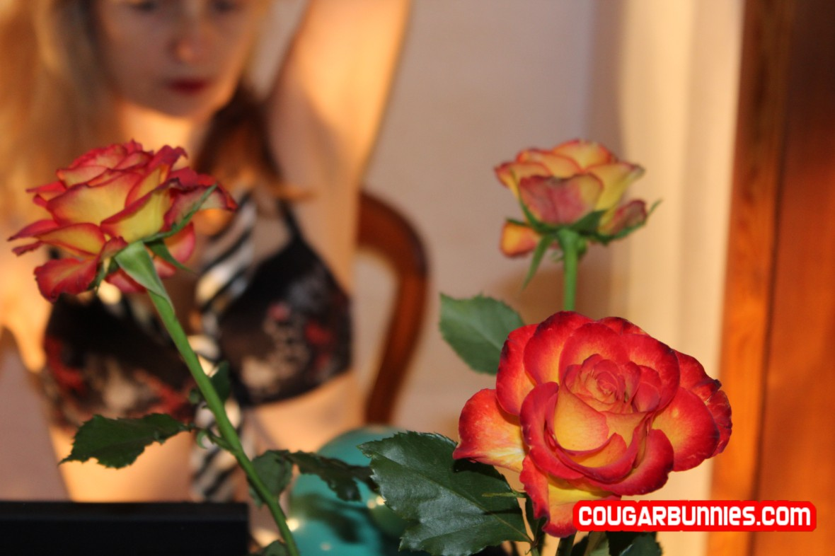 Loving these marvelous roses, I wished to pose behind them, to be their background. Next on CougarBunnies.com
